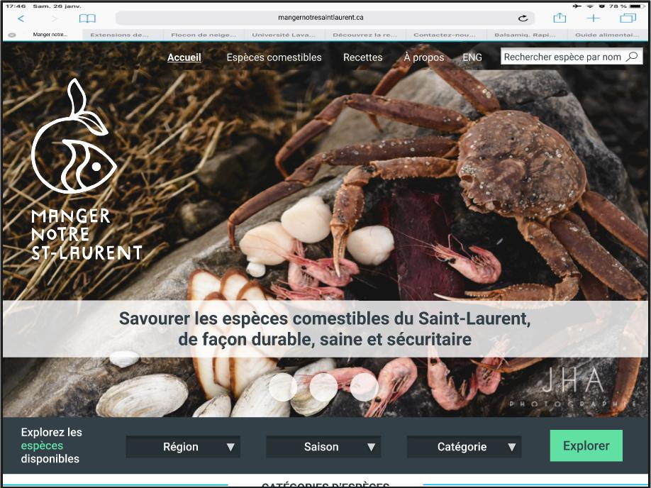 prototype-website